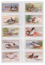 Birds Original Collectable Player's Cigarette Cards