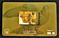 Rare UAE used Phone Cards UAE FALCON Birds of The UAE