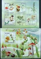 Sao Tome & Principe-Mushrooms and Orhydeas-1M/Sh.+1S/Sh.,MNH**.STP 49