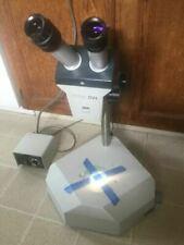 Microscopio estéreo