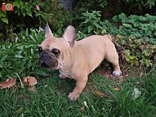 A LARGE FRENCH BULLDOG, ULTRA REALISTIC. INDOOR OR OUTSIDE. GREAT CHARACTER