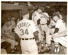 1950's Chicago White Sox Johnny Cooney & Cubs Dugout Photo From Cooney Estate