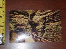 RARE OLD VINTAGE POSTCARD MOSS CHAMBER IN COLD WATER CANYON WISCONSIN DELLS WI