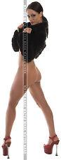 SEXY ART DECAL STICKER PIN UP GIRL - CUTE BRUNETTE SEXY LEGS SLIM PETITE BODY