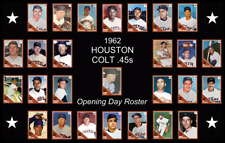 1962 HOUSTON COLT 45 45s ASTROS Baseball Card Complete Set POSTER Artwork Decor