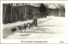 Husky Malamute Dogs Dogsledding Jackson NH Real Photo Postcard