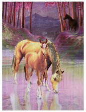 "Dufex Foil Picture Print - Horses in Twilight - size 6"" x 8"""