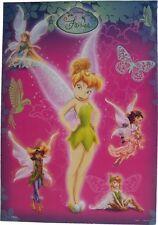 Disney Feen Gruppe Tun Pink Mini Poster 50 X 35