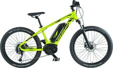 BBF E-Bike Argos 1.0 Men 24 inch 2020 400 Wh green frame size 36 cm