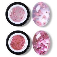 2Boxes BORN PRETTY 5ml Flower Fairy UV Gel Polish Pink Soak Off Nail Art Decor