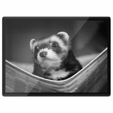 Plastic Placemat A3 Bw - Ferret Hammock Pet Rodent Animal #37246