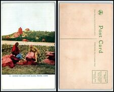 CHINA Postcard - Peking, Across The Lake From Island FK
