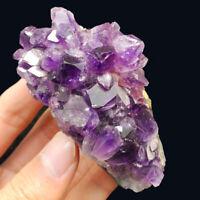 Natural Amethyst Geode Vug Purple Crystal Cluster Uruguay Specimen Reiki 155G