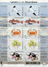 Netherlands 2017 MNH North Sea Life 10v M/S Birds Seashells Fish Crabs Stamps