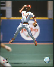 Ozzie Smith Fielding Action St. Louis Cardinals 8x10 Photo With Toploader