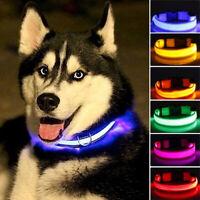Puppy Dog Night Safety Flashing  Luminous LED Light Adjustable Pet Collar Well