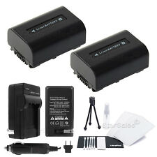 2x NP-FV30 Battery + Charger+BONUS for Sony HDR-CX110 CX130 CX350 CX550V CX760V