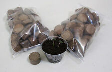 Two Pack of 50 Seed Starter Kit Germination Pods (Organic coco coir) Hydro/Soil