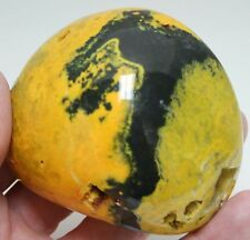 350 grams Giant Polished Bumble Bee Jasper Java Indonesia