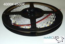 12VDC SMD5050 LED STRIP 4000K-4500K, 5m (72W, 300LEDS), IP20, 60leds / m, 14,4 W / M