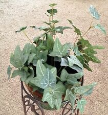 """Frosted Green 18"""" Ivy Vine Silk Flower Faux House Plant"""