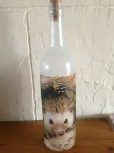 LED Light up Hedgehog Design Bottle Unique Gift