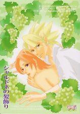 Eyeshield 21 Eye Shield Eyeshield21 LOVE Doujinshi Comic Hiruma x Mamori Chardon
