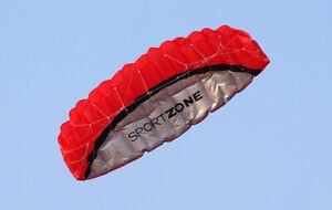 2.5m Sport Lenkdrachen Zweileiner Parafoil Drachen Lenkmatte Flugdrachen M9M5