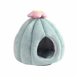 Cat Bed Cactus Shape Soft Cave With Removable Washable Cushioned Pillow Green