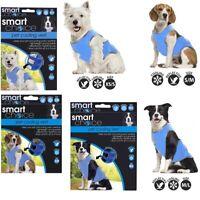 Pet Dog Cooling Vest Jacket Lightweight Reflective Summer Stay Cool Upto 6 Hours