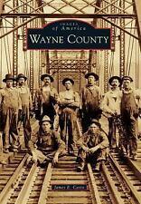Images of America: Wayne County by James E. Casto (2015, Paperback)