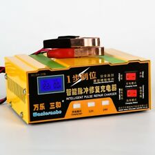 12V/24V Smart Car Battery Charger for Both Lead Acid and Lithium Batteries 100AH