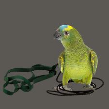 Papageienspielzeug  ! Original Aviator !  Geschirr und Leine ! 190 - 450 Gramm !