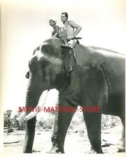 "Jock Mahoney Tarzan Goes To India Original 8x10"" Photo #M2517"