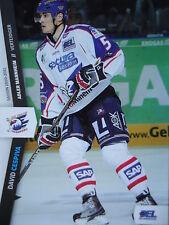 199 David Cespiva Adler Mannheim DEL 2010-11