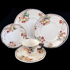 PORTOBELLO Villeroy & Boch 5 Piece Place Setting NEW NEVER USED made in Germany