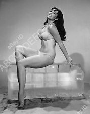 8b20-15301 super hot Edy Williams cools off on a large block off ice 8b20-15301