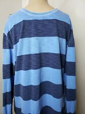 American Eagle Outfitters Athletic Fit Men's Shirt Size Medium Blue Striped