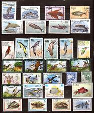 ILES des CARAÏBES faune marine et terrestre: poissons ,oiseaux  F149