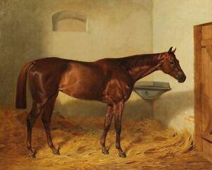 KINCSEM 8X10 PHOTO HORSE RACING PICTURE