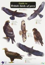 Norman, Simon-Guide To British Birds Of Prey BOOK NEW