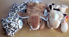 Ty Beanie Babies Set Of 3 MINT Derby, Ears, Freckles
