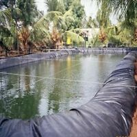 Durable Fish Pond Liner Gardens Pools PVC Membrane Reinforced Landscaping 8-32ft