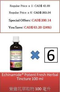100 ml Echinamide Potent Fresh Herbal Tincture - Natural Factors