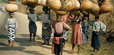 15+ African Bushel Gourd seeds; novelty; fun to grow; for Basket Arts & Crafts