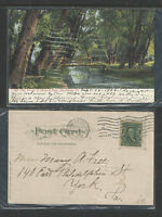 1908 THE WOODS IN PAXTANG PARK HARRISBURG PA UNDIVIDED BACK UDB POSTCARD