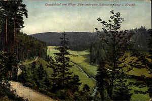 Fürstenbrunn Schwarzenberg Sachsen ~1925/30 Partie Oswaldstal am Wege gelaufen