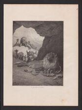 LE LION MALADE ET LE RENARD Les Fables de Lafontaine Gravure de GUSTAVE DORE