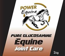 Power Equine Glucosamine Powder 100% 1kilo Compliance to ISO 9001:2015 & BCMPA