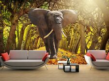 Elephant in the Park   Photo Wallpaper Wall Mural DECOR Paper Poster Free Paste
